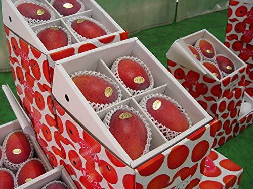 沖縄県産 紅マンゴー (秀品)2kg(3〜5個)