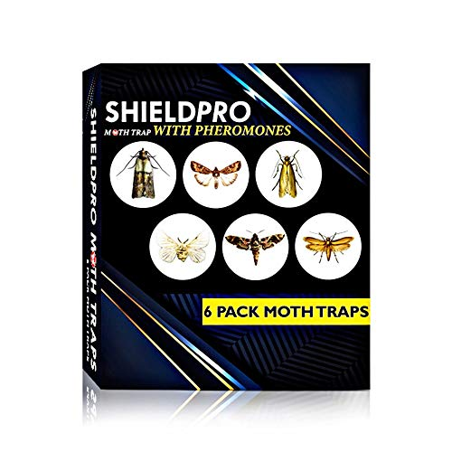 SHIELDPRO Premium Advanced Pantry Moth Traps Cloth moth traps–6 Packs, Sticky Traps – Roach Trap Eco-Friendly Moth Trap with Pheromone Lure– Odorless Mosquito trap – Insect Trap, Bugs Trap Pest