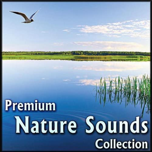 Soothing White Noise for Relaxation, Massage Therapy, Sleep