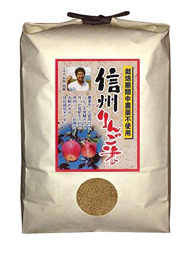 【新米】【玄米】信州りんご米 こしひかり 5kg 令和2年産