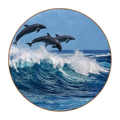 Bennigiry Posavasos con diseño de Dolphin Sea Ocean - Juego de 6 posavasos resistentes al calor