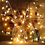 Wondder Cálidas Luces Blancas de la Secuencia de la Bola, Luces de Hadas Impermeables con Pilas Luces al Aire Libre de Interior 3M 20LEDs