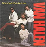 WHY CAN'T THIS BE LOVE 歌詞