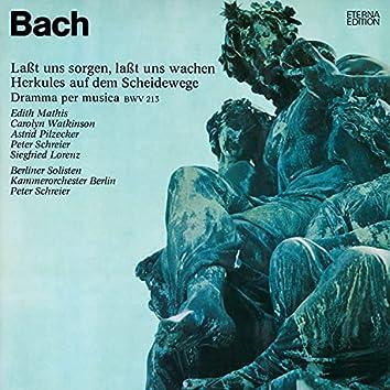 Bach: Lasst und sorgen, lasst uns wachen, BWV 213 (Herkules auf dem Scheidewege)