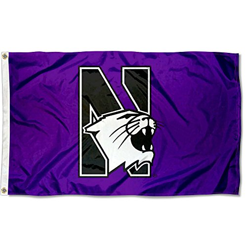 College Flags & Banners Co. Northwestern Wildcats Flag