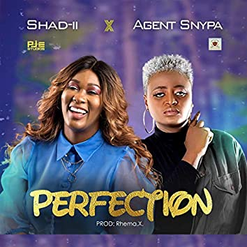 Perfection (feat. Agent Snypa)
