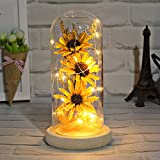 socathey Artificial Sunflower in Glass Dome with Led Light Strip, Enchanted Gift for Women on Valentine's Day Mother's Day Anniversary Birthday Christmas - Yellow