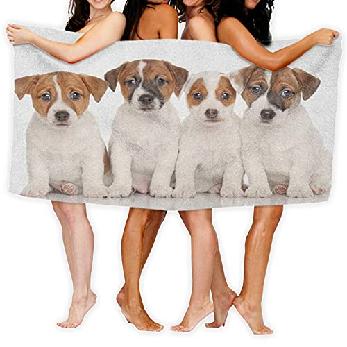 ADONINELP Ultra Absorbent Microfiber Bath Towel,Group of Jack Russell Terrier Puppies Best Friends Domestic Pets Baby Dogs,Quick Drying Oversized for Beach Surfing Swimming Hotel Spa Yoga