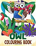 Owl Colouring Book: Unofficial High Quality Owl Colouring Pages Vol 1