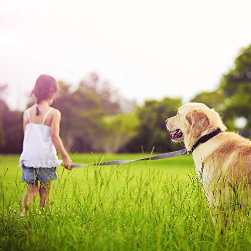VITAZOO Premium Hundeleine in Graphitschwarz, massiv und verstellbar in 4 Längen (1,1 m – 2,1 m), für große und kräftige Hunde | 2 Jahre Zufriedenheitsgarantie | Hundeführleine, Doppelleine, geflochten - 4