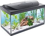 *Tetra *Starter *Line LED Aquari 54 L - Joc complet que inclou il·luminació LED, un aquari estable per a principiants amb tecnologia, aliments i productes de cura, negre