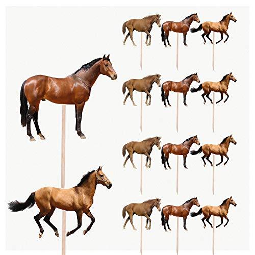Caballos de caballo fiesta de cumpleaños de alimentos Cupcakes selecciones decoraciones Toppers (Pack de 14)