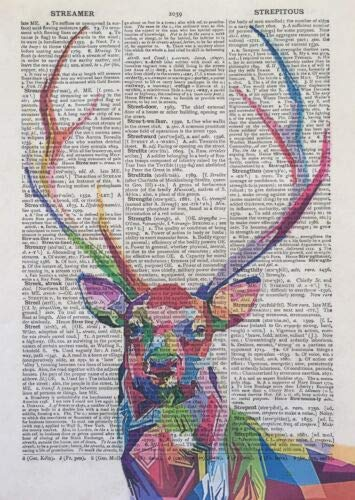 Parksmoonprints Stag Deer Print Vintage Dictionary Wall Art Picture Colourful Animal Geometric Quirky Wall Art Gift Humanised Animal