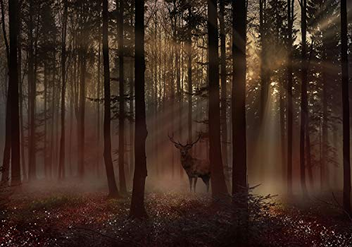 decomonkey Fototapete Wald Natur 350x256 cm Design Tapete Fototapeten Vlies Tapeten Vliestapete Wandtapete moderne Wand Schlafzimmer Wohnzimmer Hirsch Baum