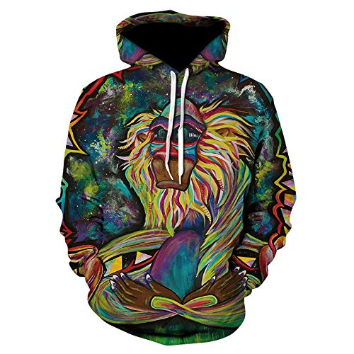 SHUAIFA Unisex Novelty Painted Stone Monkey 3D Print Funny Hoodies Casual Pullover Hooded Sweatshirt for Men Women Wy015 3XL