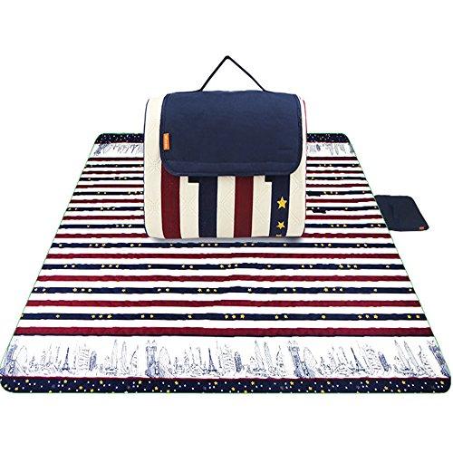 Almohadilla de humedad máquina de limpieza por ultrasonidos alfombra de picnic alfombrilla de alfombra al aire libre alfombra de 2 metros * 2 metros (Color multicolor) (Color : D)