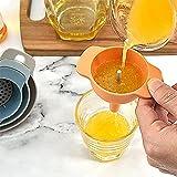 CTGVH Juego de embudo (4 en 1) embudo de aceite con filtro de filtro para el hogar para botellas de llenado con aceite en polvo líquido multifuncional embudo Set 2 piezas