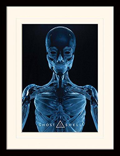 1art1 Ghost In The Shell - Skeleton Póster De Colección Enmarcado (40 x 30cm)