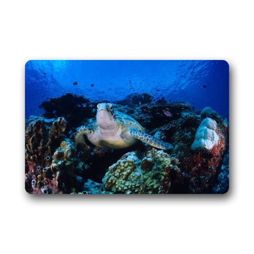 Doubee générique Design Turtle Paillasson Premium Tapis Anti-Poussière Maison passwort 46 cm x 76 cm, Tissu, E, 18\