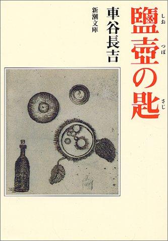 鹽壺の匙 (新潮文庫)