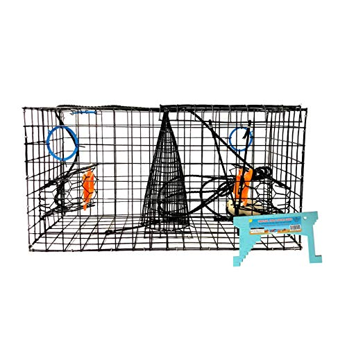 Maryland Blue Crab Pot Trap, PVC Coated Wire mesh, Heavy Duty, Two T.E.D. (Turtle Excluder Device), Two Escape Rings, Float, Rope, Ready for use. Come with Crab & Lobster Measure Gauge. Made in USA