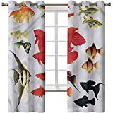 Cortina de ventana opaca, cortinas térmicas aisladas para ventanas, Aqua,Exóticos peces tropicales de acuario, 2 paneles de 38 x 45 pulgadas para oscurecer la habitación, tratamientos para dormitorio