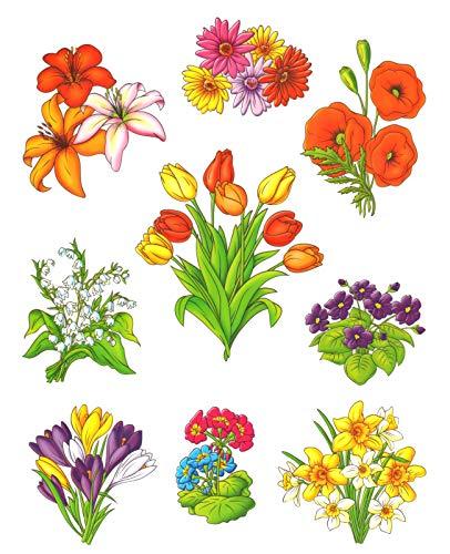 dpr. Fensterbild Set 9-teilig Blumen Blüten Lilien Mohn Gerbera Fenstersticker Fensterdeko