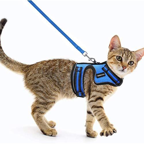 rabbitgoo Katzengeschirr mit Leine Geschirr für Katzen Ausbruchsicher Kaninchengarnitur Welpengeschirr für Kitten Kleine Hunde Chihuahua Katzenweste Verstellbar Blau
