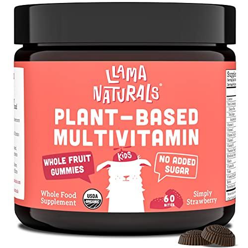 Whole Fruit Gummy Multivitamin for Kids; No Added Sugar, Organic, Plant-Based, Vegan; 13 Whole Food Vitamins (C, D3, B12, Folate); 60 Gummies (30 Days) (Strawberry)