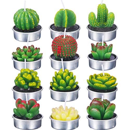 ExH Juego de regalo de 12 velas aromáticas para plantas suculentas, delicadas velas suculentas, para fiestas, bodas, spa, decoración, aromaterapia, baño, yoga, regalos