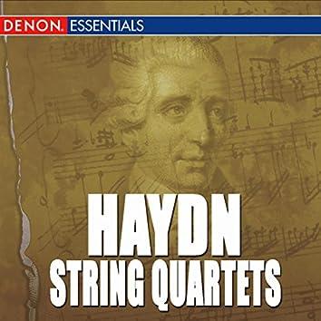 """Haydn: String Quartets Nos. 1, 2, 3 & 5 """"Lark"""", Op. 64"""