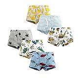 LeQeZe Boxers Garçon Lot de 6 Coton Enfant Garcon Culotte sous-Vêtement 2-9 Ans (Boys Dinosaur Mix 1, 8-9Ans)