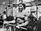 32inch x 24inch/80cm x 60cm Arnold Schwarzenegger Silk