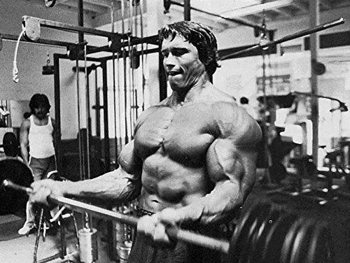 32inch x 24inch/80cm x 60cm Arnold Schwarzenegger Silk Poster