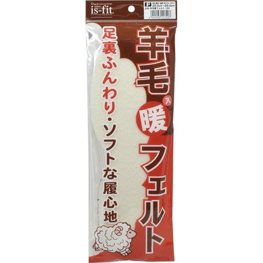 火曜日付属品浸すis-fit(イズフィット) 羊毛入り暖フェルト 男女兼用 22.0-28.0cm 白