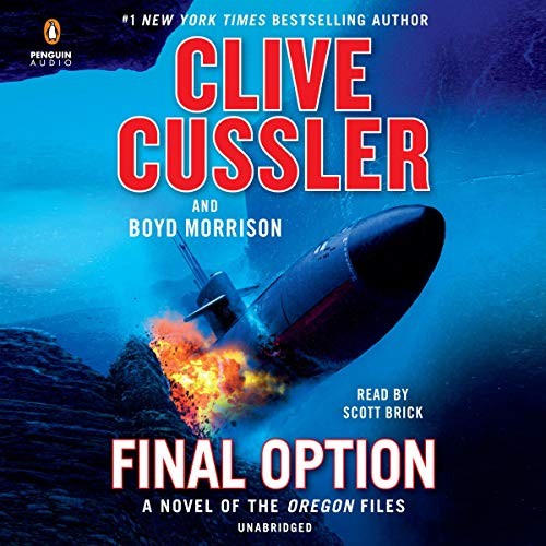 Final Option audiobook cover art
