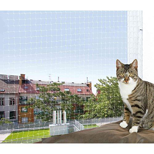 <div>Katzenschutznetz: Test & Empfehlungen (08/21)</div>