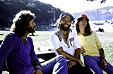 The Bee Gees at a Park Photo Print (25,40 x 20,32 cm)