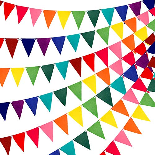 60pcs Rainbow Felt Fabric Pennant Banners Multicolor Party Garland for Birthday Party, Classroom Decoration (5 Pack)