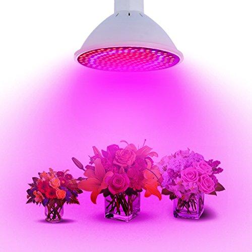 EgBert 20W E27 166 Rot 34 Blaue LED Grow Light Plant Lampe Garden Greenhouse Plant Seeding Light