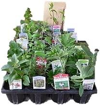 H&Aハーブショップ お茶用のハーブ苗おまかせ12種セット
