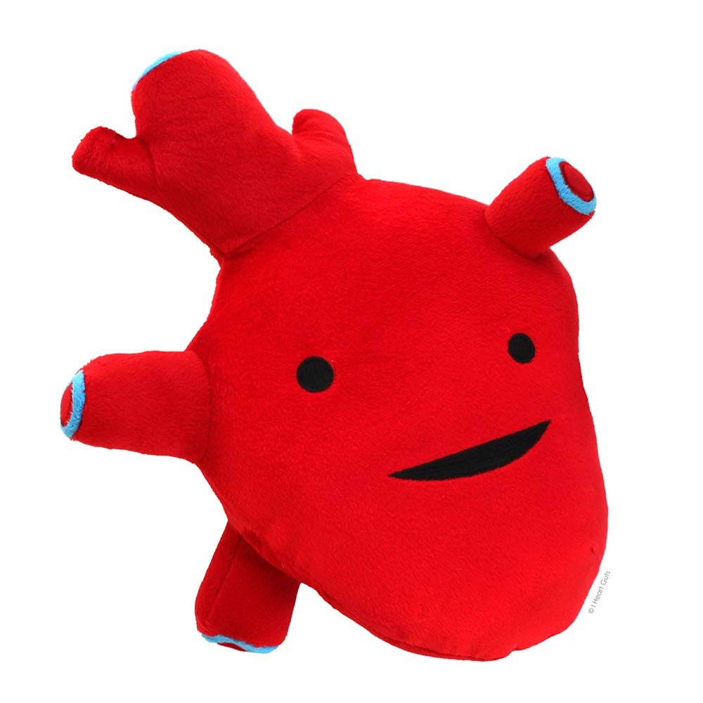 Amazon Com I Heart Guts Heart Plush I Got The Beat 10 Cute Cardiology Toy Toys Games