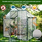 JULY'S SONG Greenhouse,Polycarbonate Walk-in Plant Greenhouse with Window for Winter,Garden Green House Kit for Backyard… 14 【EXTEND THE GROWING SEASON】Perfect for a first-time or seasoned home gardener, JULY'S SONG walk-in greenhouses protect plant against rough weather. You can make sure that your plants are healthy and happy all year round. 【STURDY & DURABLE】This DIY Greenhouse Kit is made of 4mm twinwall UV/wind resistant polycarbonate panels and thickened premium aluminum frame,all this together with heavy-duty galvanized base help provide solid support for your entire plant nursery. 【MULTI-FUNCTION DESIGN】The greenhouse for outdoor has sliding doors for easy access, roof vent for effortless ventilation, and rain gutters for effective drainage of water and snow.