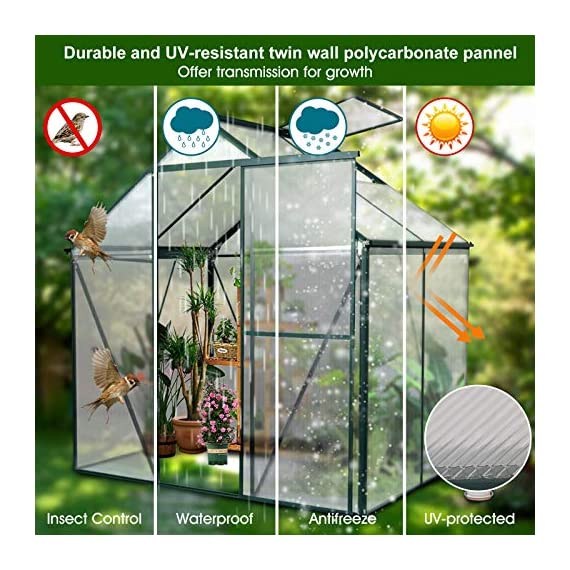 JULY'S SONG Greenhouse,Polycarbonate Walk-in Plant Greenhouse with Window for Winter,Garden Green House Kit for Backyard… 6 【EXTEND THE GROWING SEASON】Perfect for a first-time or seasoned home gardener, JULY'S SONG walk-in greenhouses protect plant against rough weather. You can make sure that your plants are healthy and happy all year round. 【STURDY & DURABLE】This DIY Greenhouse Kit is made of 4mm twinwall UV/wind resistant polycarbonate panels and thickened premium aluminum frame,all this together with heavy-duty galvanized base help provide solid support for your entire plant nursery. 【MULTI-FUNCTION DESIGN】The greenhouse for outdoor has sliding doors for easy access, roof vent for effortless ventilation, and rain gutters for effective drainage of water and snow.