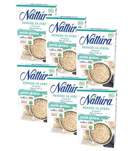 Nattura Flocons de Grains Entiers Sans Gluten Riches en fibres avec des bétaglucanes source de protéines Végétaliennes OK - (6 x 350 Gram)