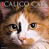 Just Calico Cats 2021 Wall Calendar