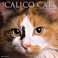 Calico Cats 2021 Calendar