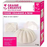 Graine Créative Polvere di Ceramica Fredda 1 kg
