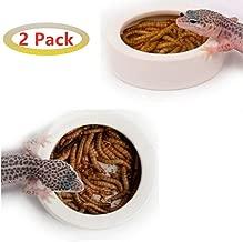 Reptile Water Food Bowl 2 Pcs Worm Dish Ceramic Pet Bowls Anti-Escape Mini Reptile Feeder Mealworms Bowl for Lizard Bearded Dragon Gecko Chameleon Hermit Crab Dubia Reptirock Retile Cricket Dish