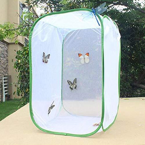 HOMYY Insekt Käfig Netz Schmetterling Lebensraum Groß Netz Käfig Pflanze Glashaus Erscheinen Transparent Wasserdicht Kultivierung Wachsen Zelt Reißverschluss Design - Wie Bild Show, l